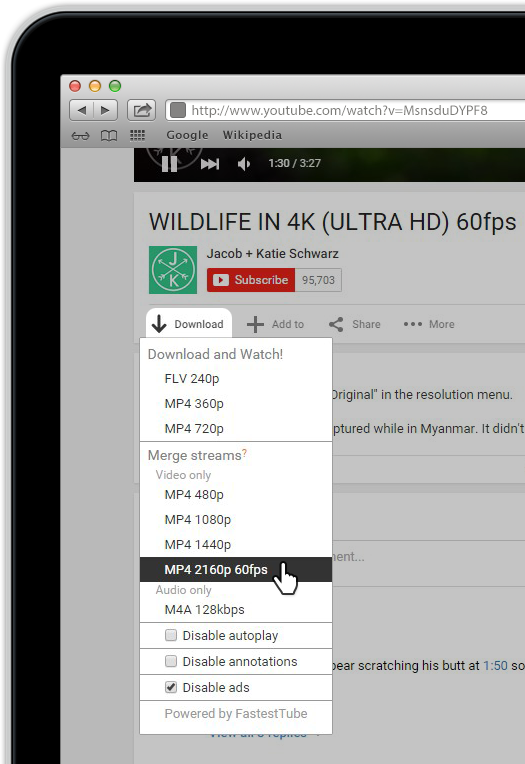 fastesttube youtube downloader tool